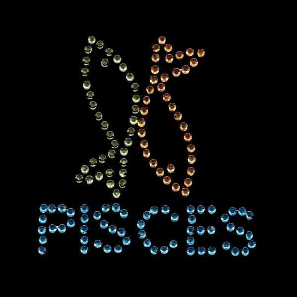 Pisces Zodiac Sign Iron on