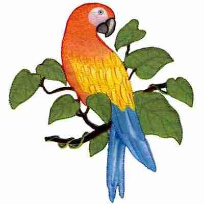 Birds - Parrots - Single Orange Parrot on Branch Iron On Bird Ap