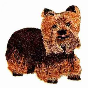 Dogs - Bright-Eyed Yorkshire Terrier Dog Applique