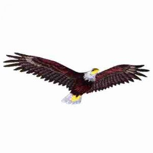 Birds - Eagles - American Bald Eagle in Flight Iron On Patch App