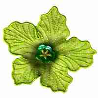 Green Chiffon Flower Iron On Floral Applique