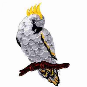 Birds - Cockatoo on Perch Iron On Patch Applique