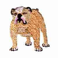 Dogs - English Bulldog Iron On Dog Patch Applique