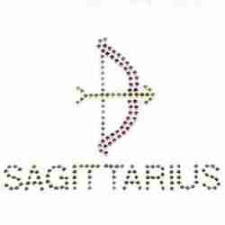 sagittarius zodiac sign iron on hotfix applique