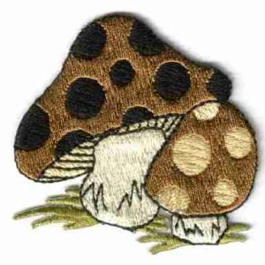 Pair of Polka Dotted Brown Mushrooms