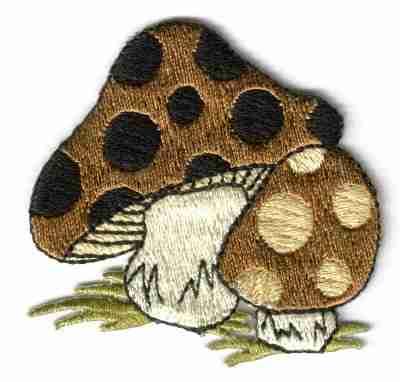 Pair of Polka Dotted Brown Mushrooms