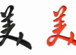 "Chinese Character ""Beauty"" in Red Iron On Applique"