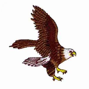 Birds - Eagle - Bald Eagle Midflight Iron On Embroidered Patch A