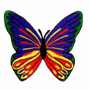 Butterflies - Large Brightly Colored Spreadwing Butterfly Iron-O