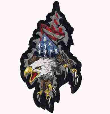 Birds - Eagles - Eagle ripping through with American Flag Iron